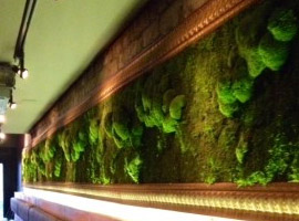 The Living Moss Wall